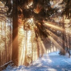 GISMETEO RU: Погода в Ижевске на месяц Прогноз